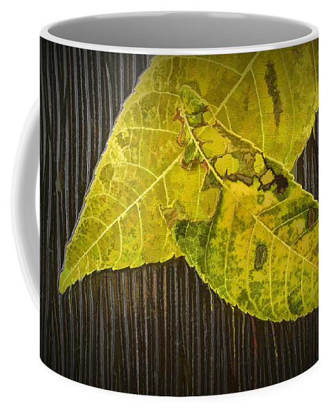 Art Coffee Mug featuring the photograph Yellow Leaves by Randall Nyhof