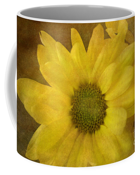 Mum Coffee Mug featuring the photograph Yellow Mums by Benanne Stiens