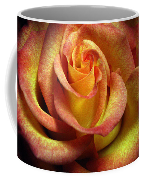 Rose Coffee Mug featuring the photograph Yellow Orange Rose by Nancy Griswold