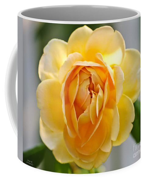 Yellow Coffee Mug featuring the photograph Yellow Rose Blooming by Diego Re