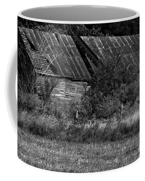 Abandoned Coffee Mug featuring the photograph Yesterday's Barn by Alan Look