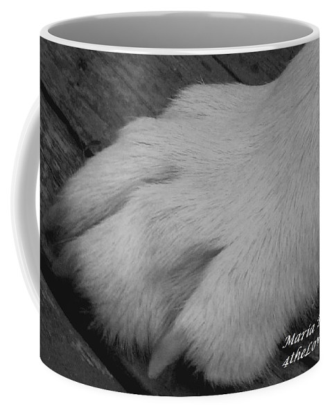 Wolf Coffee Mug featuring the photograph Young Wolf Paw by Maria Urso