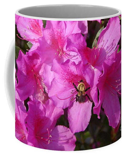 Azalea Coffee Mug featuring the photograph Yum by Priscilla Richardson