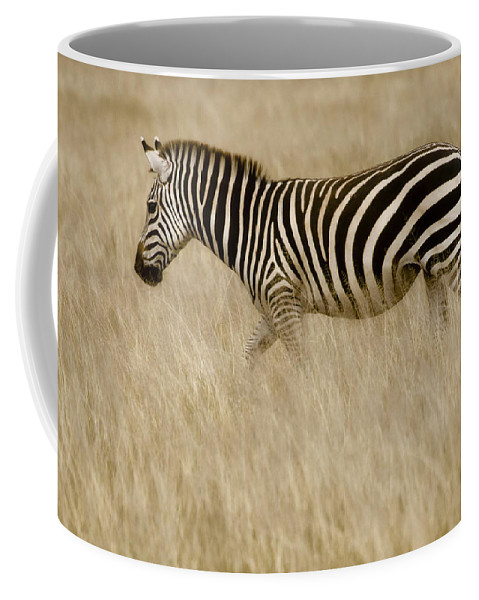 Africa Coffee Mug featuring the photograph Zebra In Grasses 2 by Jack Daulton