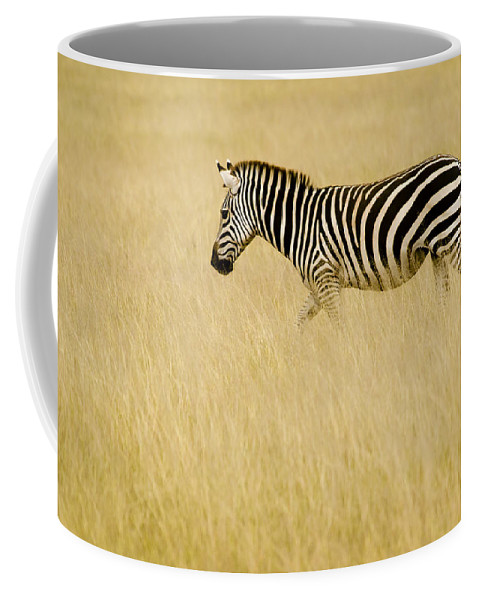 Africa Coffee Mug featuring the photograph Zebra In Grasses by Jack Daulton