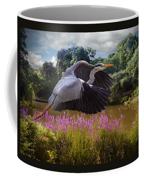 Flight Coffee Mug featuring the photograph A Heron Flies by Rob Lester