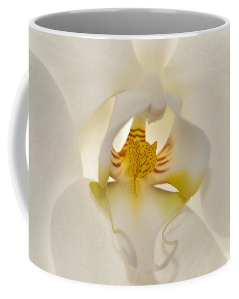 Orchid Coffee Mug featuring the photograph In The Heart Of The Orchid by Sandra Bronstein