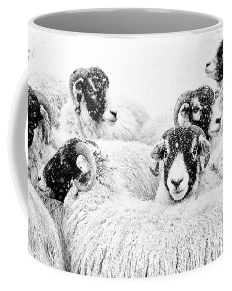Swaledale Coffee Mug featuring the photograph In Winters Grip by Janet Burdon