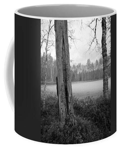 Lehtokukka Coffee Mug featuring the photograph Liesilampi 3 by Jouko Lehto