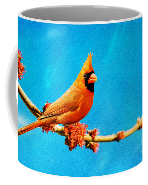 Northern Cardinal Coffee Mug featuring the photograph Male Northern Cardinal Perched On Tree Branch by Laura D Young