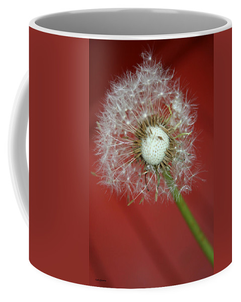Nature Coffee Mug featuring the photograph Nature Red by Linda Sannuti