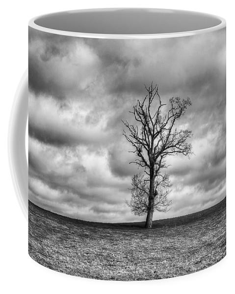 Single Tree Coffee Mug featuring the photograph Single Tree by Dave Godden