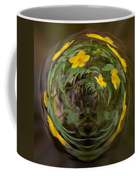 Lehtokukka Coffee Mug featuring the photograph This Little Anemone Planet 2 by Jouko Lehto