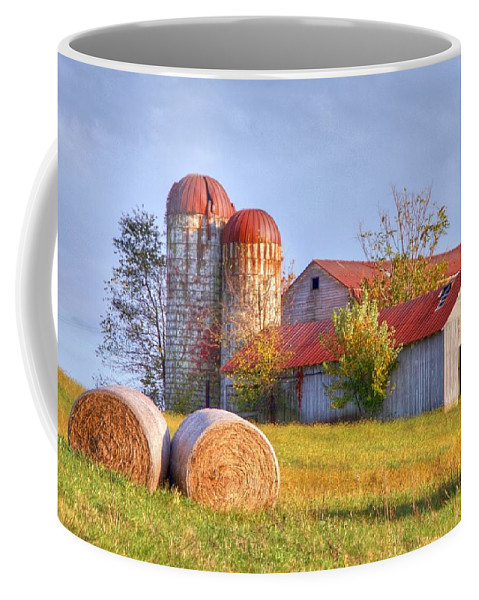 Barn Coffee Mug featuring the photograph Two by Mitch Cat