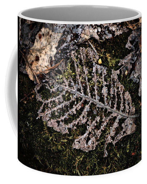 Lehtokukka Coffee Mug featuring the photograph Vanishing by Jouko Lehto