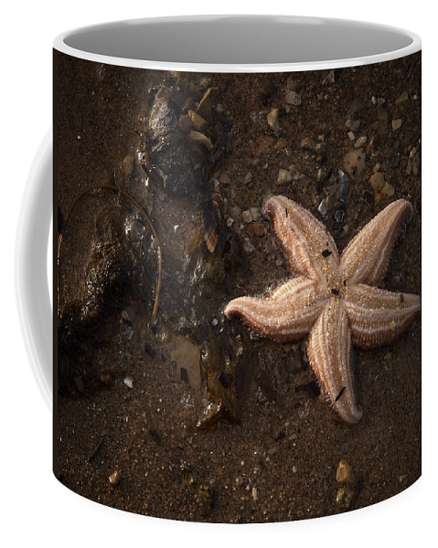 Lehtokukka Coffee Mug featuring the photograph Vanishing Star by Jouko Lehto