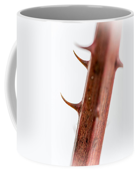 Blackberry Stem Coffee Mug featuring the photograph Wild Blackberry Stem by Sherman Perry
