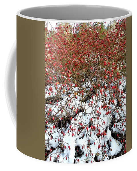 Winter Coffee Mug featuring the photograph Winter Harvest 2 by Will Borden