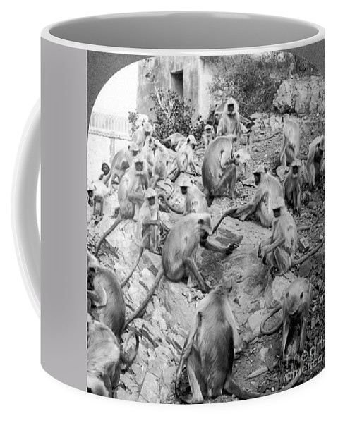 20th Century Coffee Mug featuring the painting India: Monkey Temple by Granger