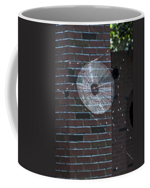 Disney World Coffee Mug featuring the photograph 0112- Web by David Lange