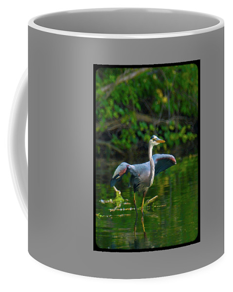 Great Blue Heron Coffee Mug featuring the photograph 052714-134-a by Mike Davis
