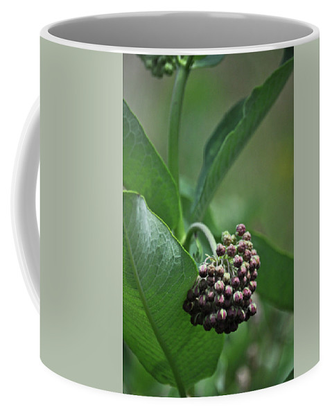 Flower Coffee Mug featuring the photograph 081117010 by Jean Edwards