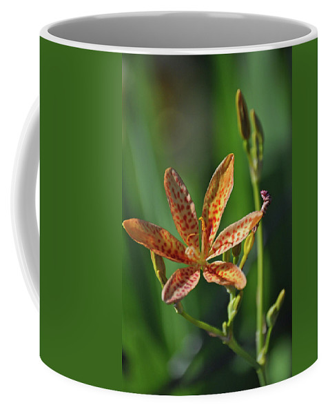 Flower Coffee Mug featuring the photograph 081117011 by Jean Edwards