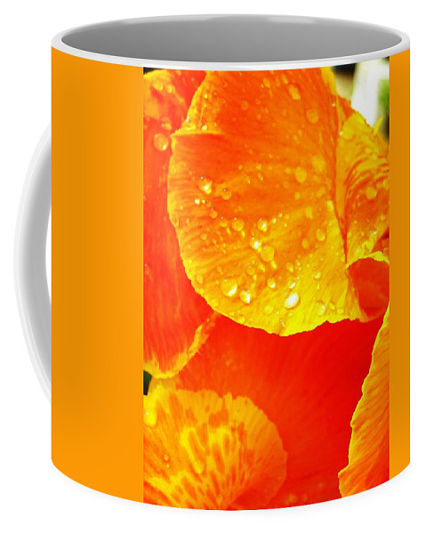 Flower Coffee Mug featuring the photograph After The Rain ... by Juergen Weiss