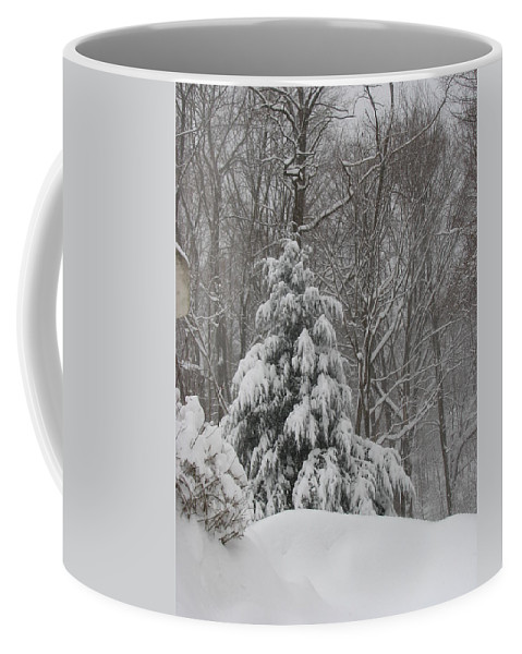 Landscape Coffee Mug featuring the photograph After The Snow by Sandra Bourret
