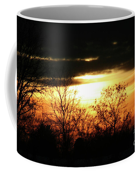 Wisconsin Coffee Mug featuring the photograph After The Storm by Tommy Anderson