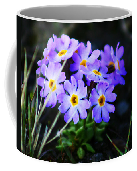 Flowers Coffee Mug featuring the photograph Alaskan Wild Flowers by Anthony Jones