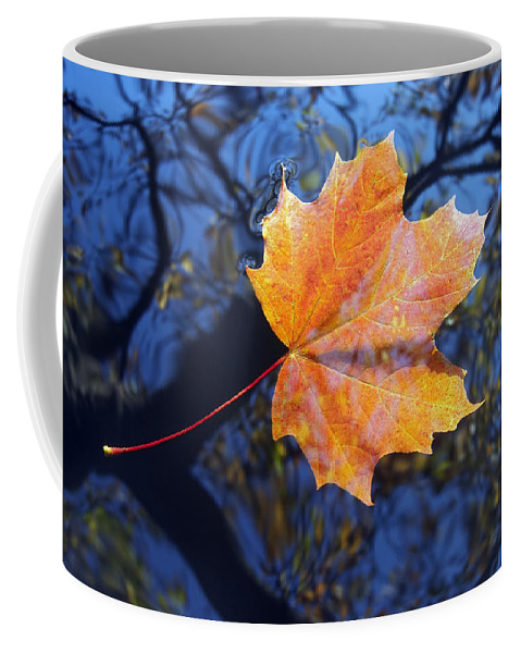 Leaf Coffee Mug featuring the photograph All About Autumn by Michal Boubin