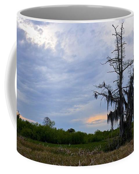Marsh Coffee Mug featuring the photograph Almost Sunset by Carol Bradley