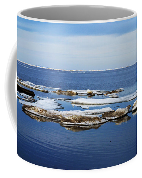 Ice Coffee Mug featuring the photograph Arctic Ice by Anthony Jones