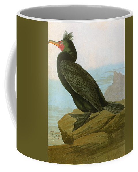 1838 Coffee Mug featuring the photograph Audubon: Cormorant by Granger