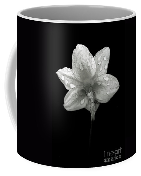 Daffodil Coffee Mug featuring the photograph Backside Daffodil Dew by Deborah Benoit