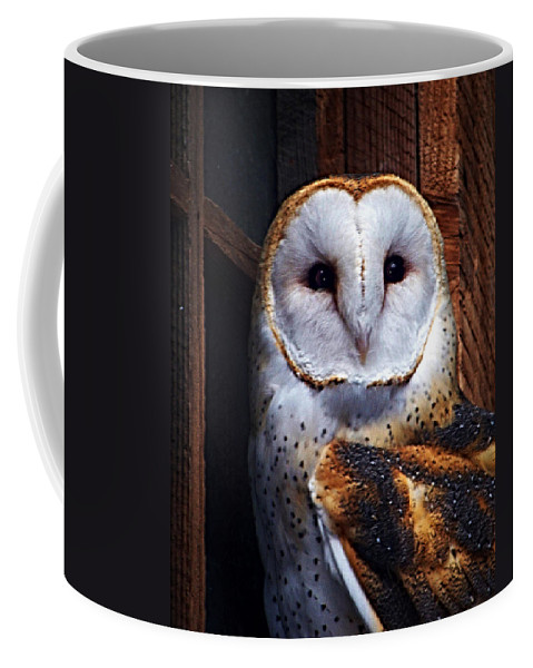 Digital Painting Coffee Mug featuring the photograph Barn Owl by Anthony Jones