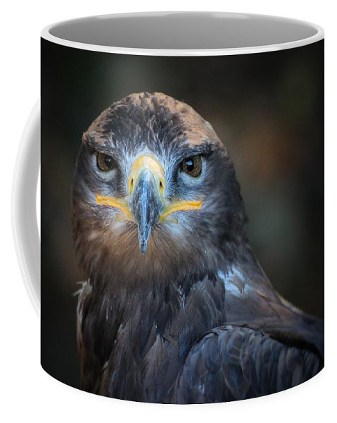 Bird.wings Coffee Mug featuring the photograph Bird Of Prey by FL collection