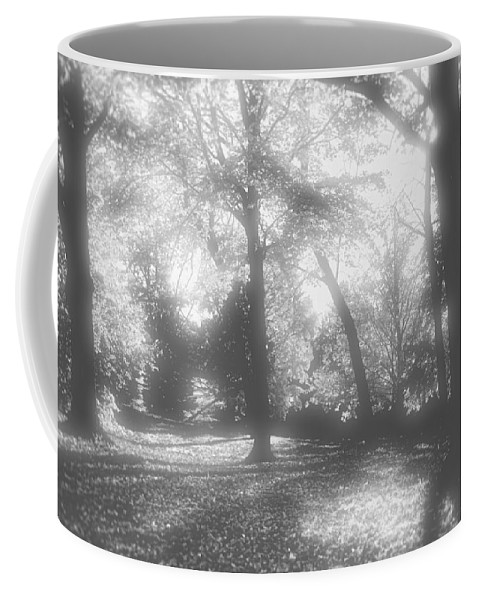 Root River Parkway Coffee Mug featuring the photograph Black And White by Debbie Nobile