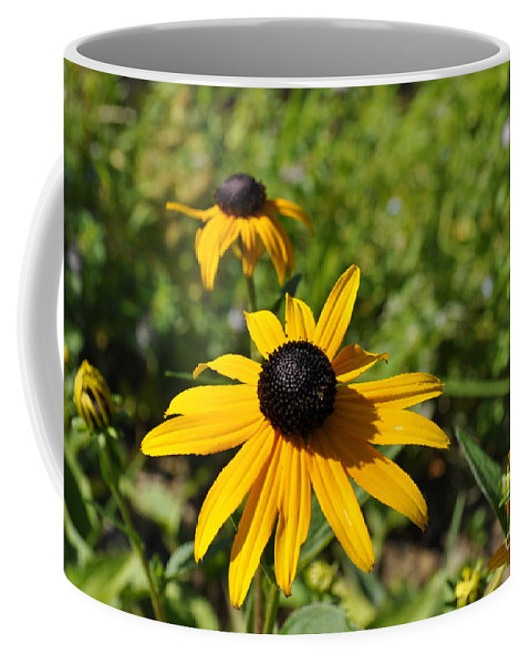 Black-eyed Susans Coffee Mug featuring the photograph Black Eyed Susans by Penny Neimiller