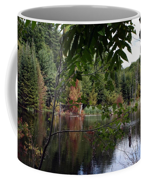 Landscape Coffee Mug featuring the photograph Blueberry Mountain by Pat Purdy
