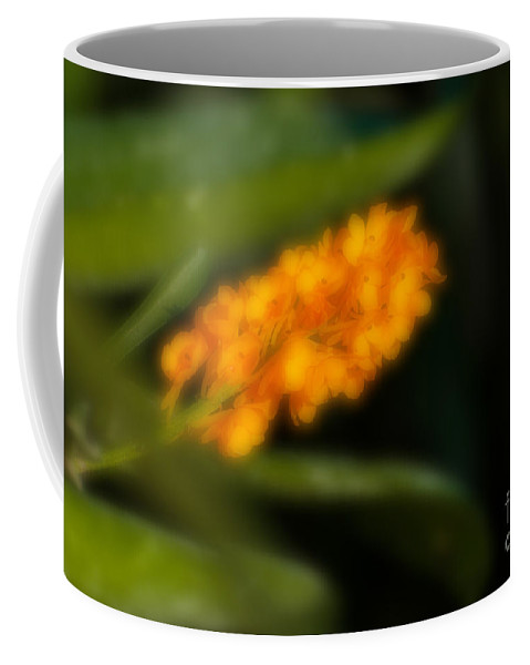 Yellow Coffee Mug featuring the photograph Blurred Seasonal Orchid Flowers With Dark Green Background by Rudra Narayan Mitra