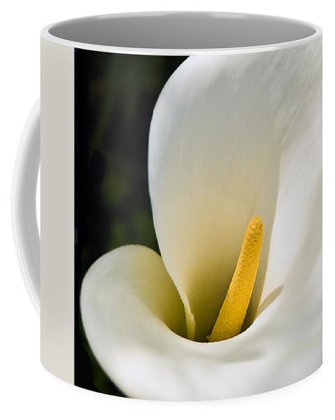 Calla Lily Coffee Mug featuring the photograph Calla Lily by Mick Burkey