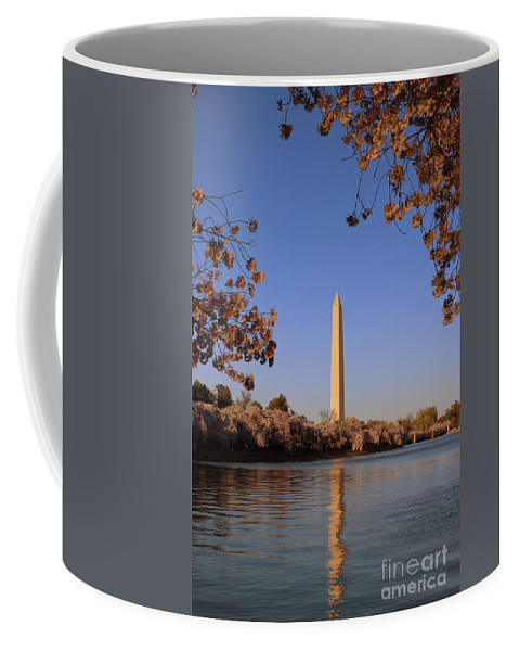 Coffee Mug featuring the photograph Cherry Blossoms by Hanni Stoklosa