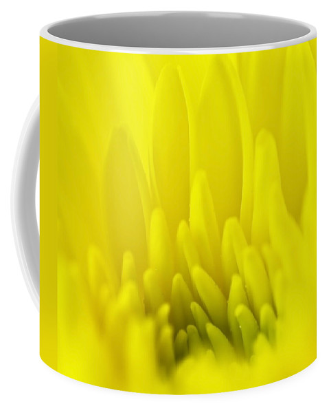 Blossom Coffee Mug featuring the photograph Chrysanthemum by Svetlana Sewell