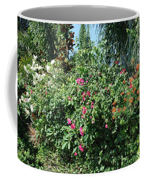 Landscape Coffee Mug featuring the photograph Colors by Rob Hans