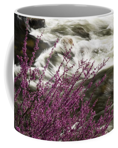 California Scenes Coffee Mug featuring the photograph Cranberry Gulch by Norman Andrus