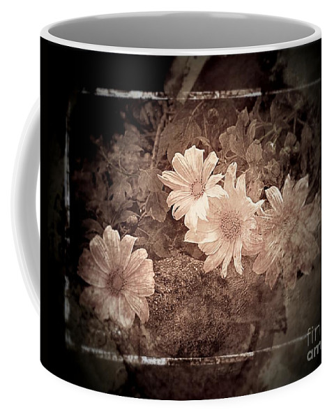 Wild Sunflowers Coffee Mug featuring the photograph Cream by Clare Bevan