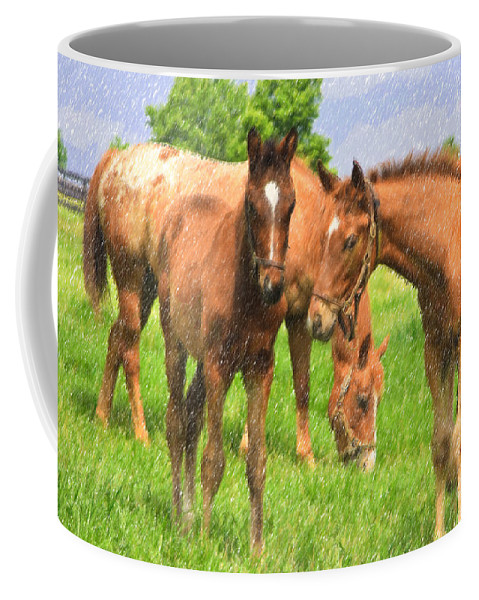 Horse Coffee Mug featuring the photograph Cute Colts by Jill Lang