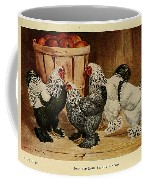 Poultry Coffee Mug featuring the painting Dark And Light Brahma Bantams by Edwin Megargee